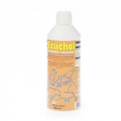 ECUCHOL SOLUTION ORALE 500ML
