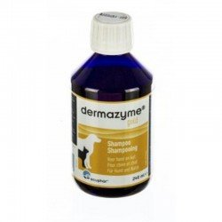 DERMAZYME GOLD SHAMPOING 50% 240ML