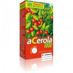 Arkopharma Acerola 1000 familypack tabl à macher 60