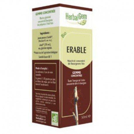 Herbalgem Erable champetre macérat 15ml