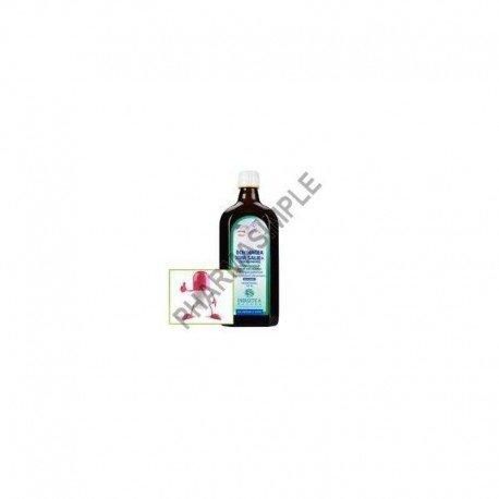 Energetica echinacea thym-sauge sirop 500ml