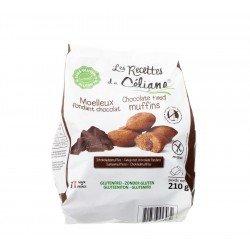 Celiane moelleux fond.chocolat s/gluten 210g 4579