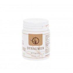 Dynaumon capsules 60