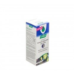A-vogel Dormeasan hot drink sirop 100ml