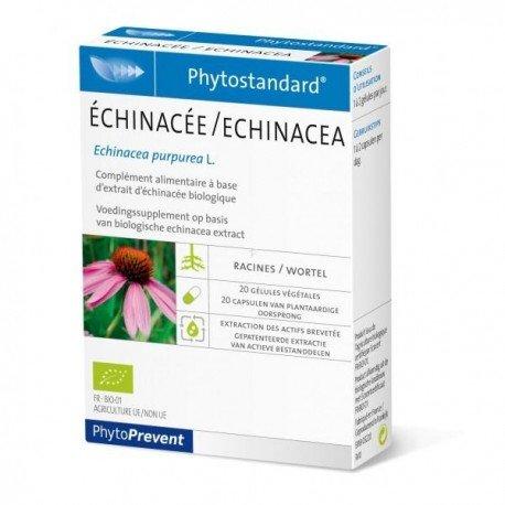 Pileje Phytostandard echinacée 20 gélules