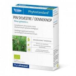 Pileje Phytostandard Pin Sylvestre 20 capsules