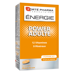 Forte Pharma Energie power adulte comp 28