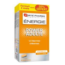 Forte Pharma Energie Power Adulte comp 56 promo 20%