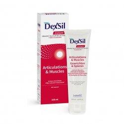 Dexsil Articulations & muscles gel 100ml