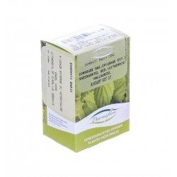Pharmaflore Consoude Racine Boite 100g