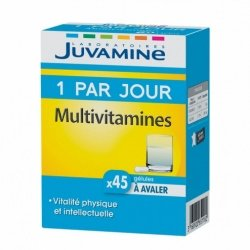 Juvamine Multivitamine 1 par Jour 45 gélules