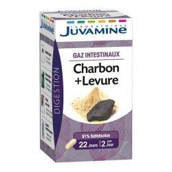 Juvamine Gaz Intestinaux Charbon + Levure 45 gélules