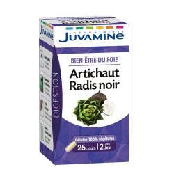 Juvamine Bien-Etre du Foie Artichaut Radis Noir 50 gélules