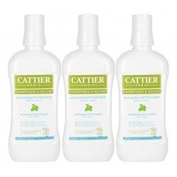 Cattier Trio Pack Bain de Bouche Fraîcheur Menthe - Souak Bio 3x500ml