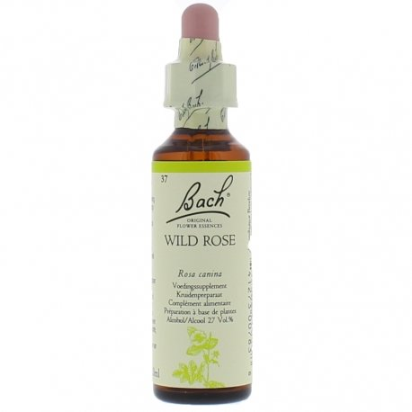 Fleurs de Bach wild rose 20ml