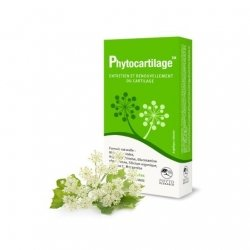 Phyto Research Vitalco Phytocartilage 60 gélules