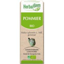 Herbalgem Pommier macerat 50ml