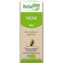 Herbalgem Vigne macerat 50ml