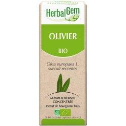 Herbalgem Olivier macérat 50ml