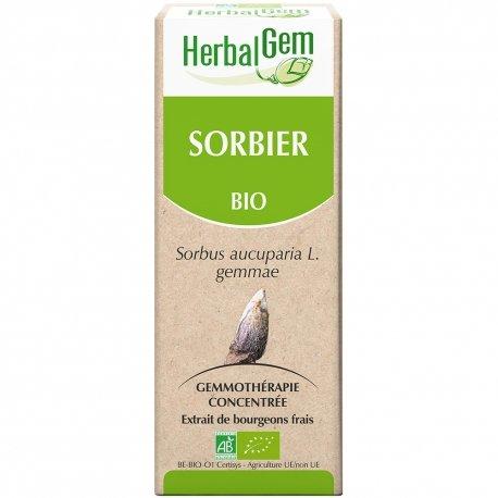 Herbalgem Sorbier macerat 15ml