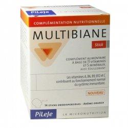 Pileje Multibiane Arôme Orange 14 sticks