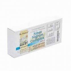 Ribes nigrum complex - the herborist ampoules 20 x 10ml 0747